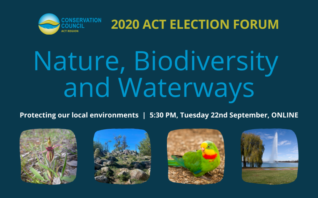 Election Forum: Nature, Biodiversity and Waterways