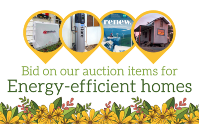 Auction items for a more energy efficient home
