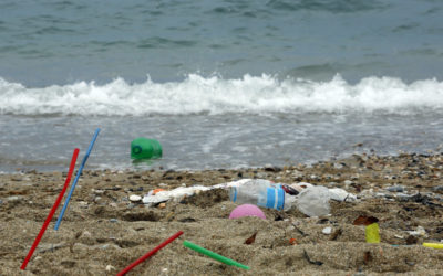 We need to rethink plastics in the ACT